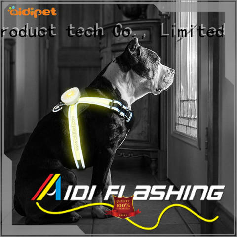 AIDI lighted dog harness customized for park
