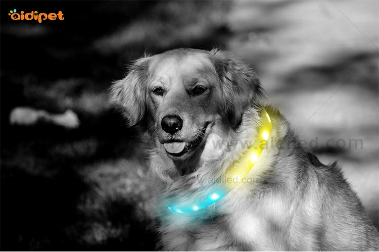 AIDI-Led Light Up Dog Collar, Fish Filament Rechargeable Led Dog Leash-8