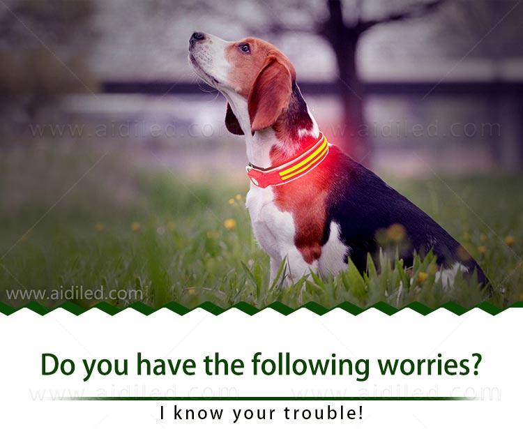 AIDI-Find Dog Collar Safety Light Aidi-c21 Wholesale Pet Dog Led-2