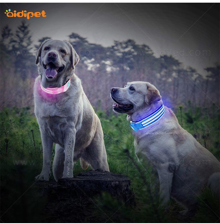 AIDI remote led flashing dog collar design for walking-13
