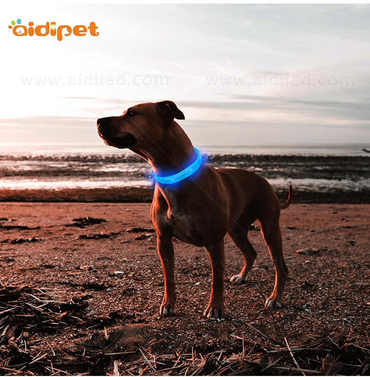 AIDI printing dog collars for dark nights design for outdoors-9