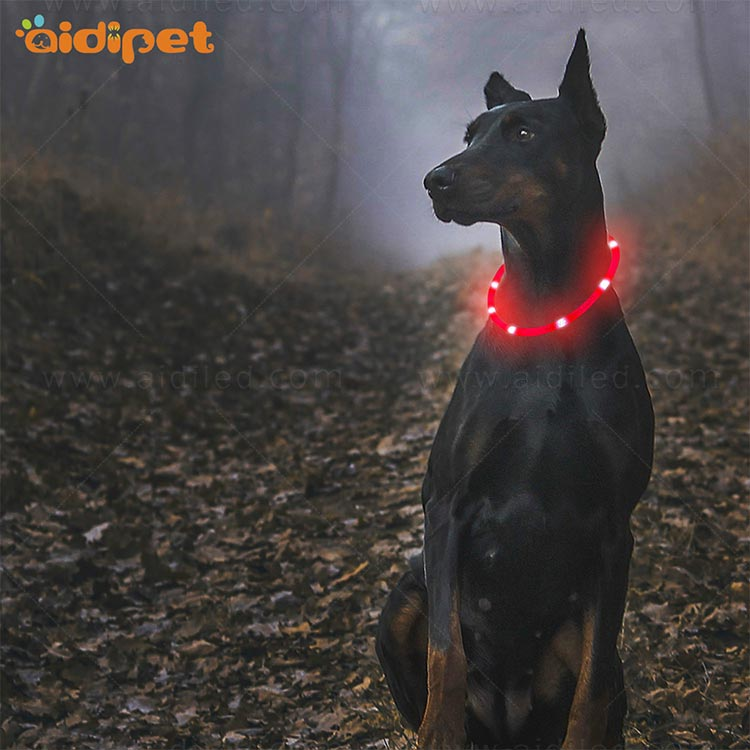 AIDI-High-quality Waterproof Light Up Dog Collar | Rechargeable Pet Collar-10