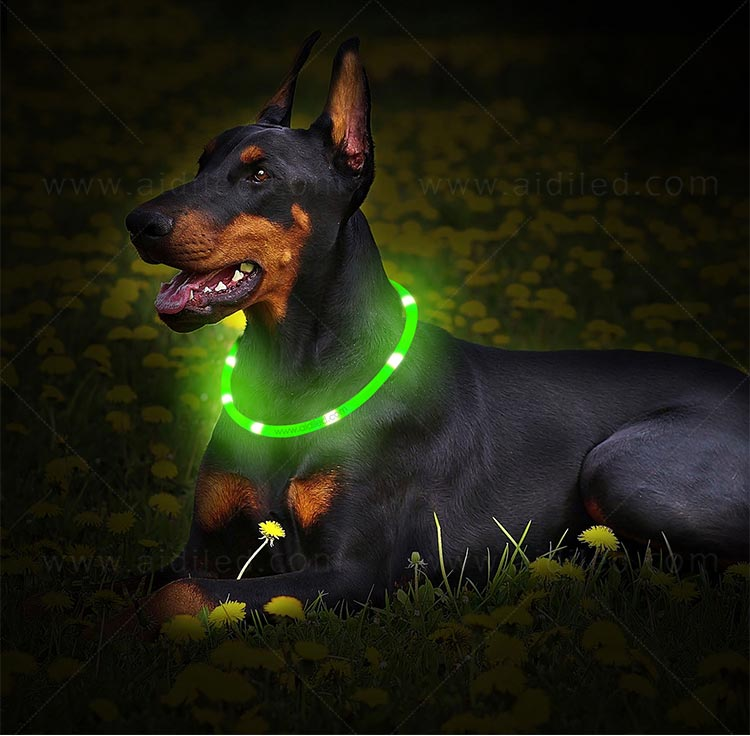 AIDI-High-quality Waterproof Light Up Dog Collar | Rechargeable Pet Collar-11