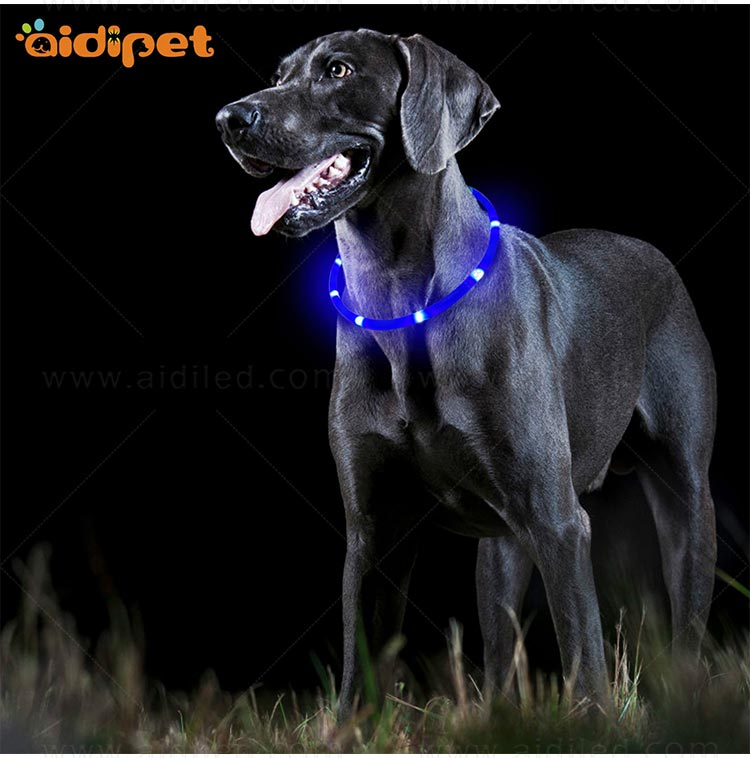 AIDI-High-quality Waterproof Light Up Dog Collar | Rechargeable Pet Collar-12