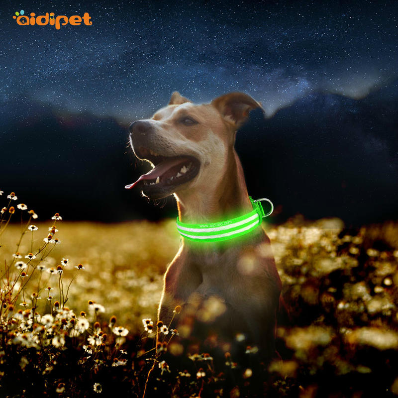 AIDI-C17 Metal Buckles USB Rechargeable LED Dog Collar