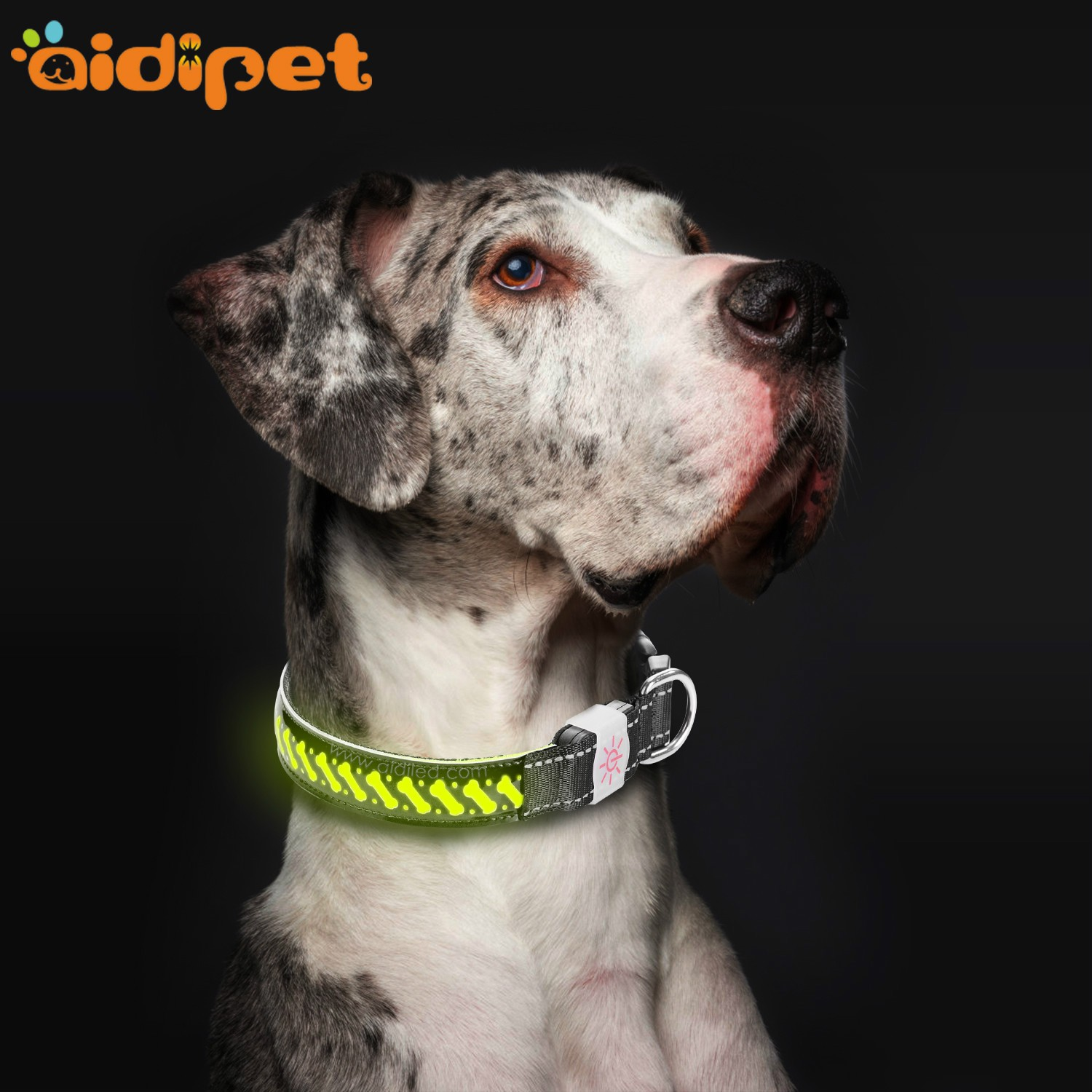 AIDI-Rechargeable Flashing Dog Collars LED Pets Collar-1