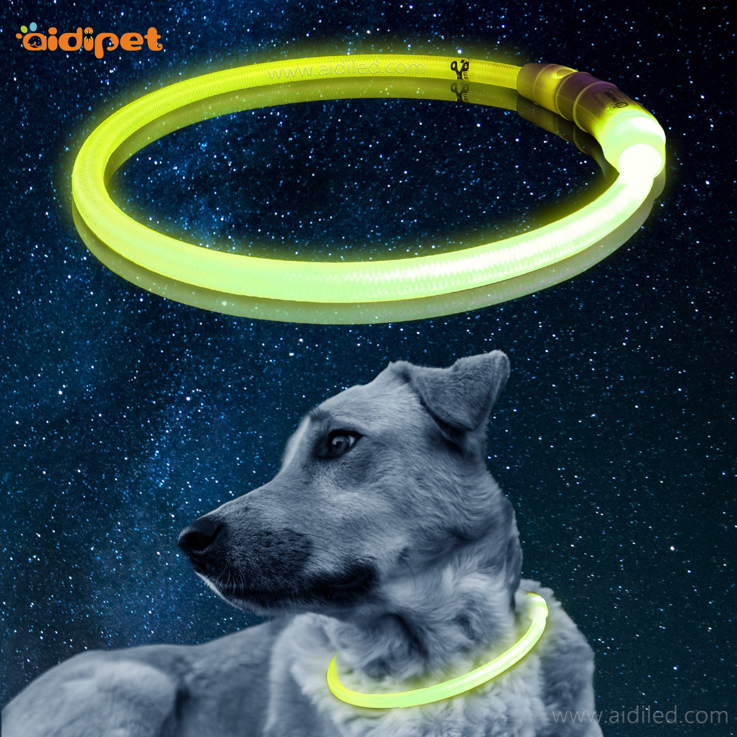 nylon led dog collars design for walking-7