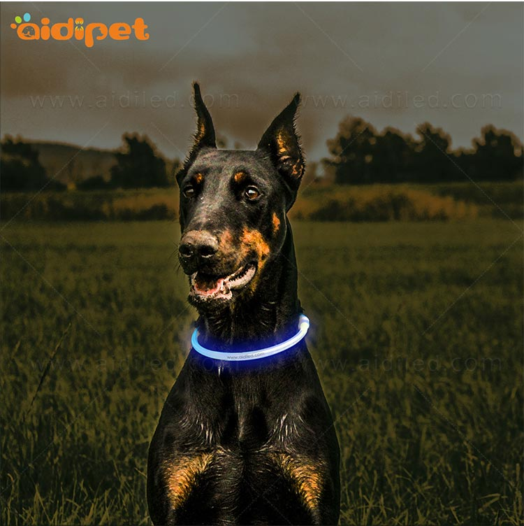 nylon led dog collars design for walking-10