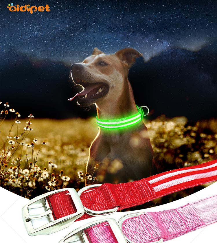 AIDI-High-quality Best Dog Collar Light | Glowing Dog Collar-2