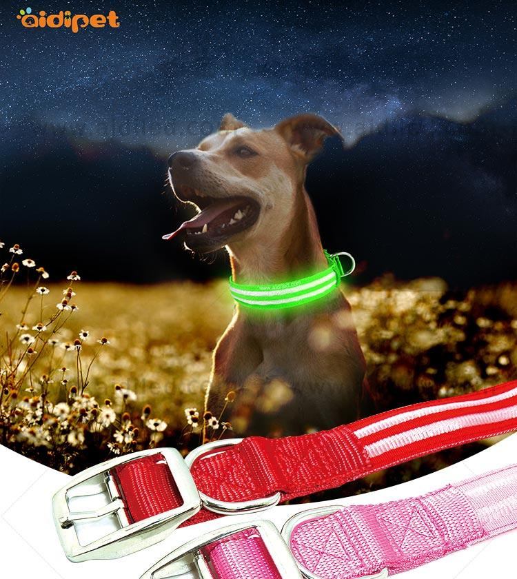 lite up dog collars for outdoors AIDI