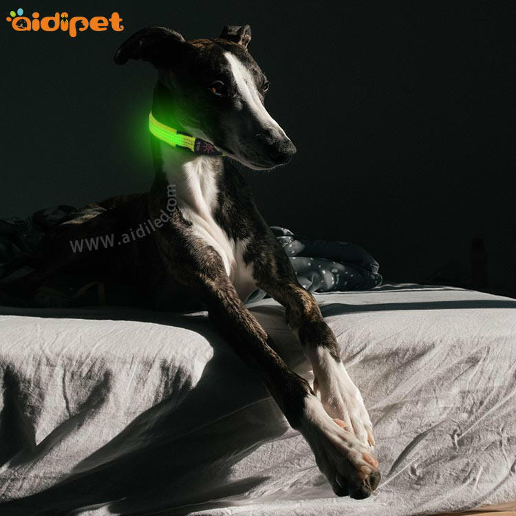AIDI filament light up dog collar rechargeable factory for pet