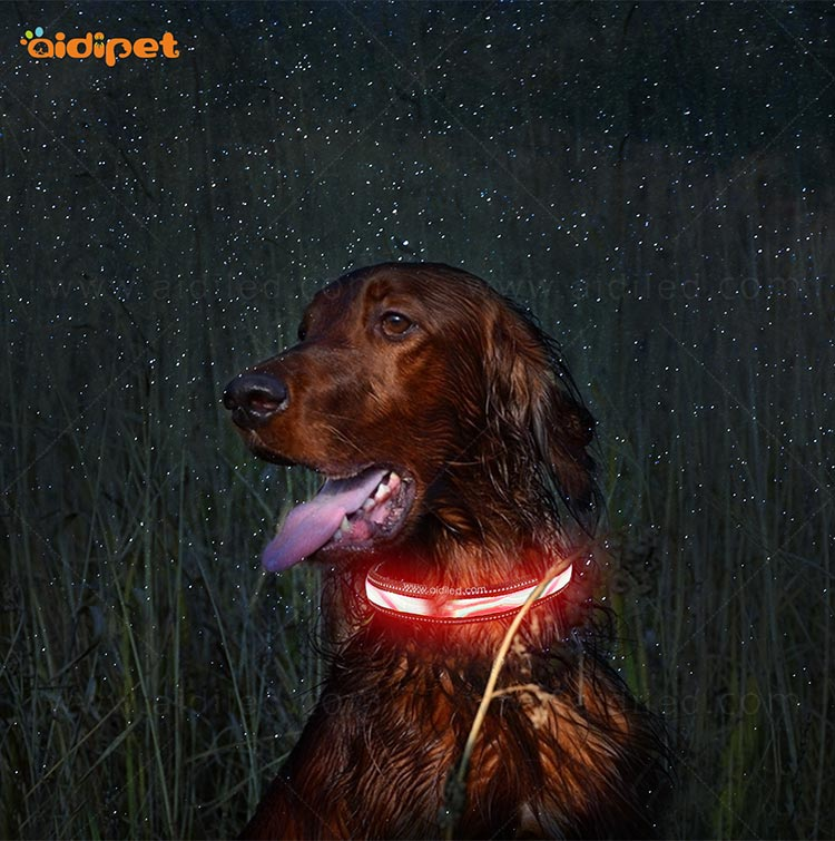 AIDI-Find Light Up Dog Collar Rechargeable Led Nylon Dog Collar-8