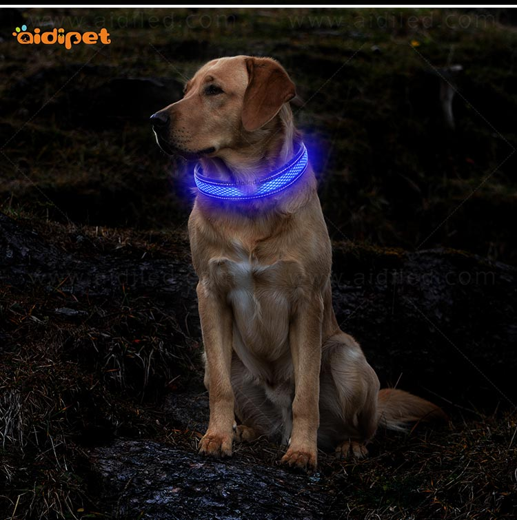 AIDI-Led Dog Collar Waterproof | Light Up Led Shining Dog Collar-11