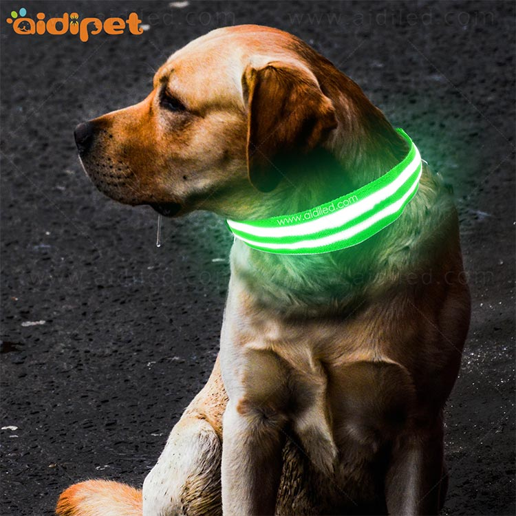 AIDI-C15 Personalized USB Rechargeable LED Dog Collar-10