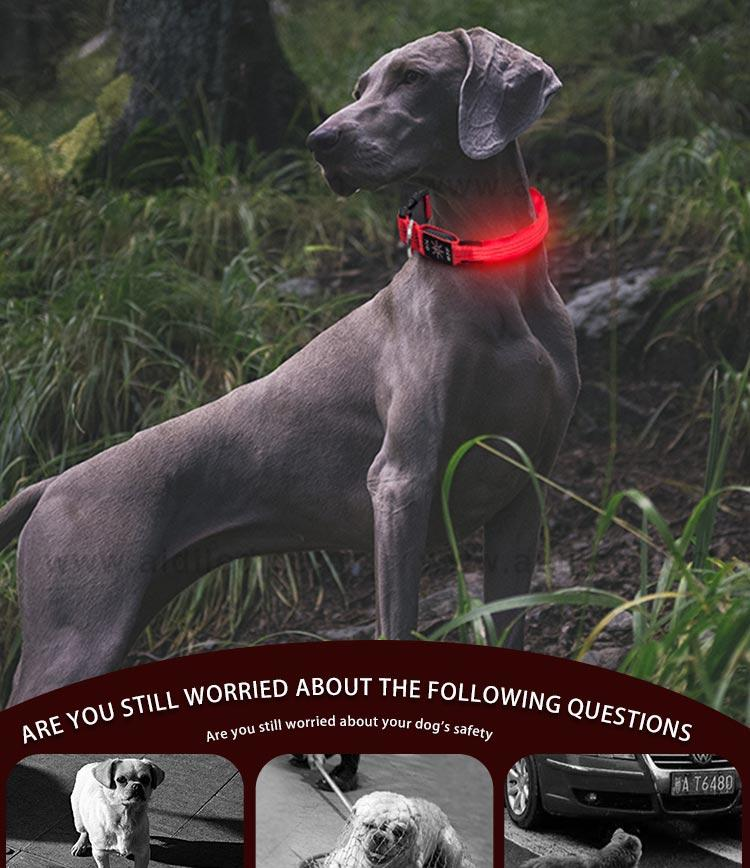 AIDI led flashing dog collar design for outdoors