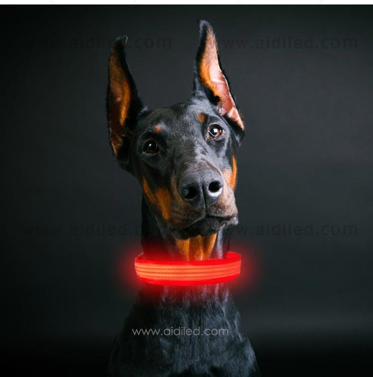 AIDI flashing rechargeable dog collar light inquire now for park-10