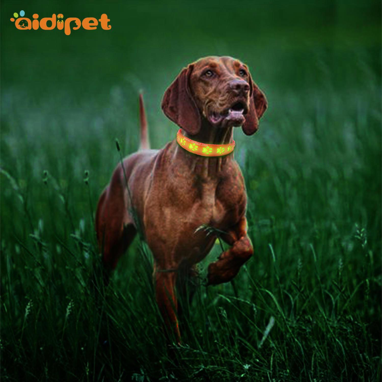 AIDI-C20 Wholesale Pet Dog Led Collar