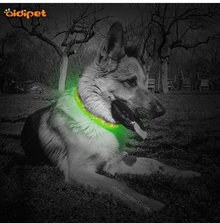 AIDI flashing dog collar design for outdoors-8