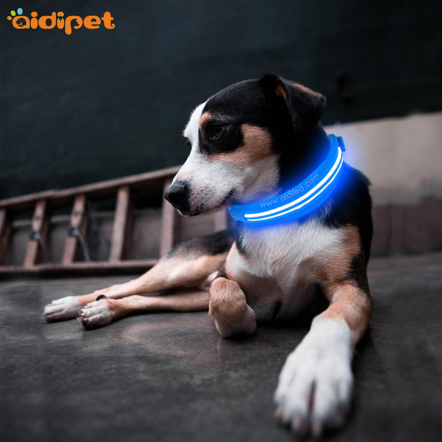 AIDI silicone dog collar led flashing light with good price for pet-2