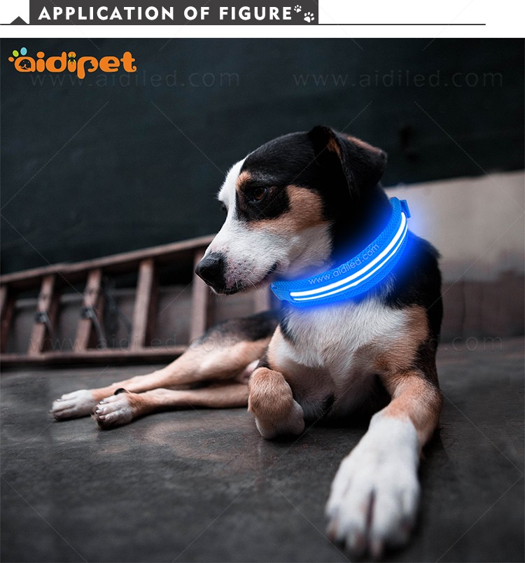 AIDI silicone dog collar led flashing light with good price for pet-9