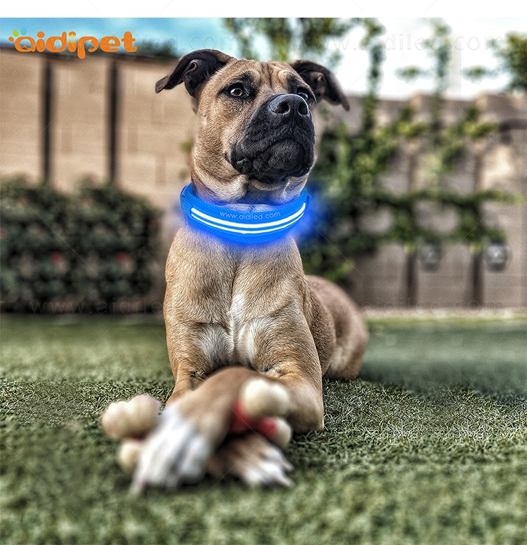 AIDI silicone dog collar led flashing light with good price for pet-11