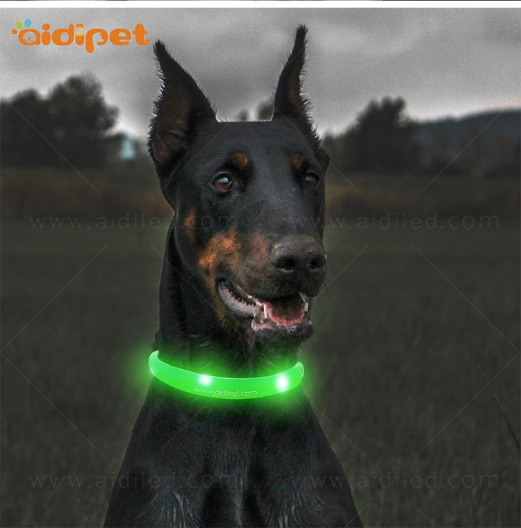 AIDI-Led Light Up Dog Collar Led Fashionable Dog Collar-11