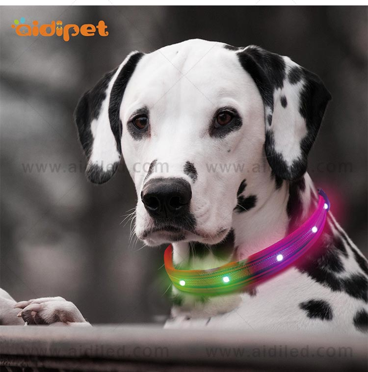 AIDI-C27 Colorful Dog Collar Led Flashing Light-12