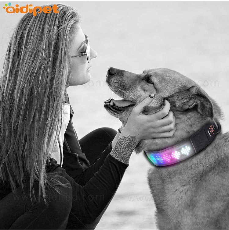 AIDI-Flashing Dog Collar Light Led App Controlled Safety Dog Collars-10