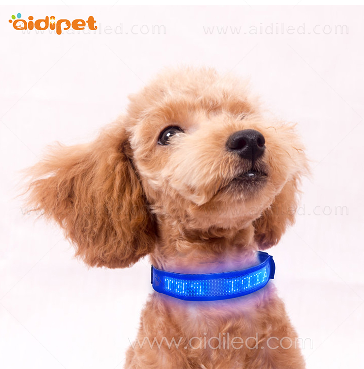 AIDI-Dog Collar Led Flashing Light, Bluetooth Remote Controlled-12