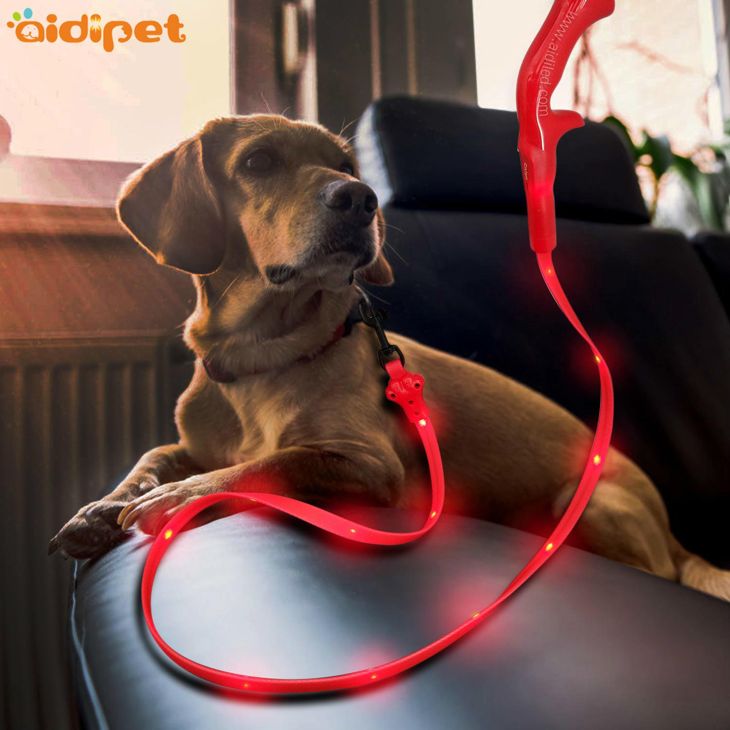 Flat Led PVC Dot Light Illuminated Dog Leash  AIDI-L8