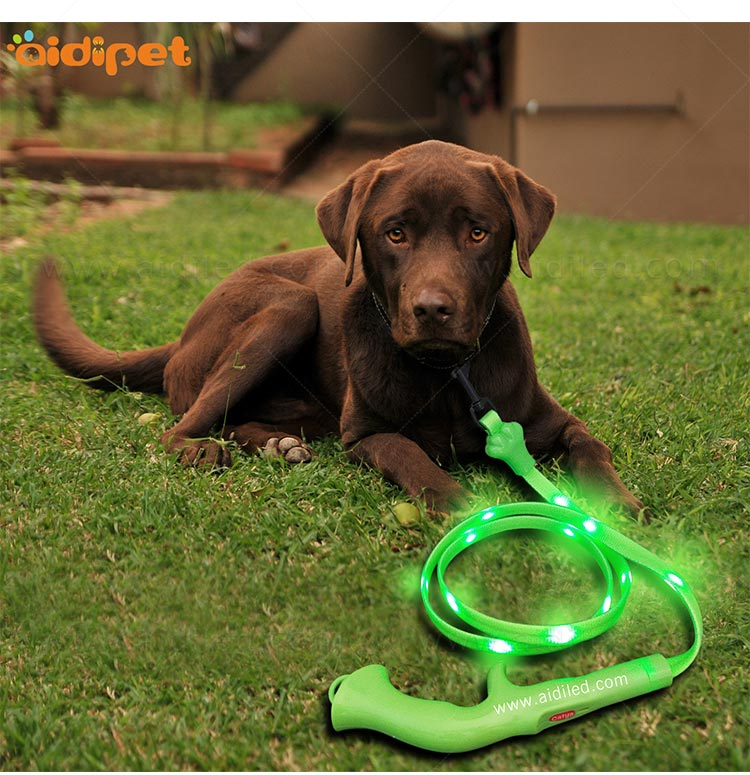 reflective lighted dog leash with good price for outdoors-10