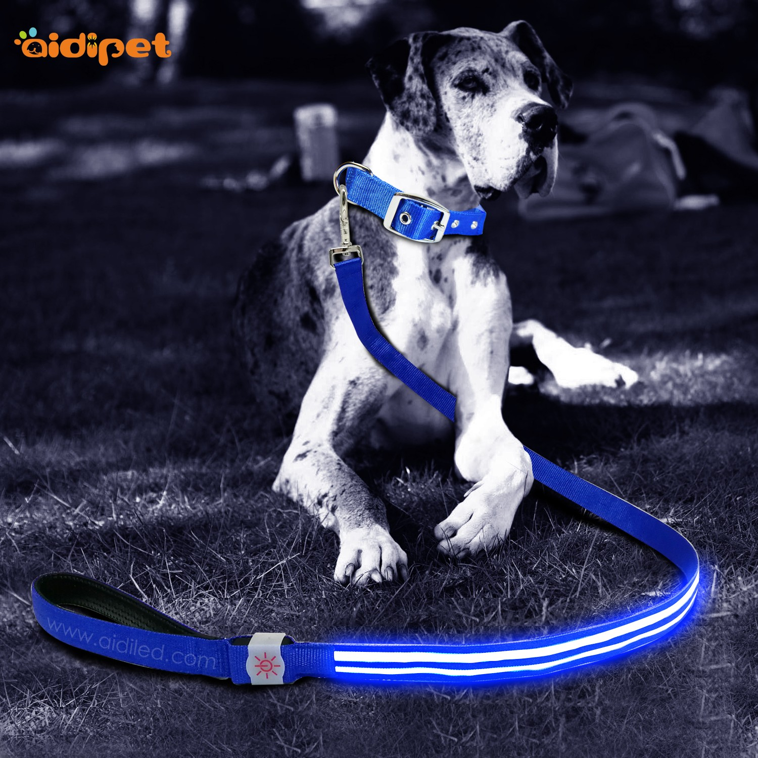 AIDI-Dog Leash With Flashlight Flashing Dog Leash Manufacture-1