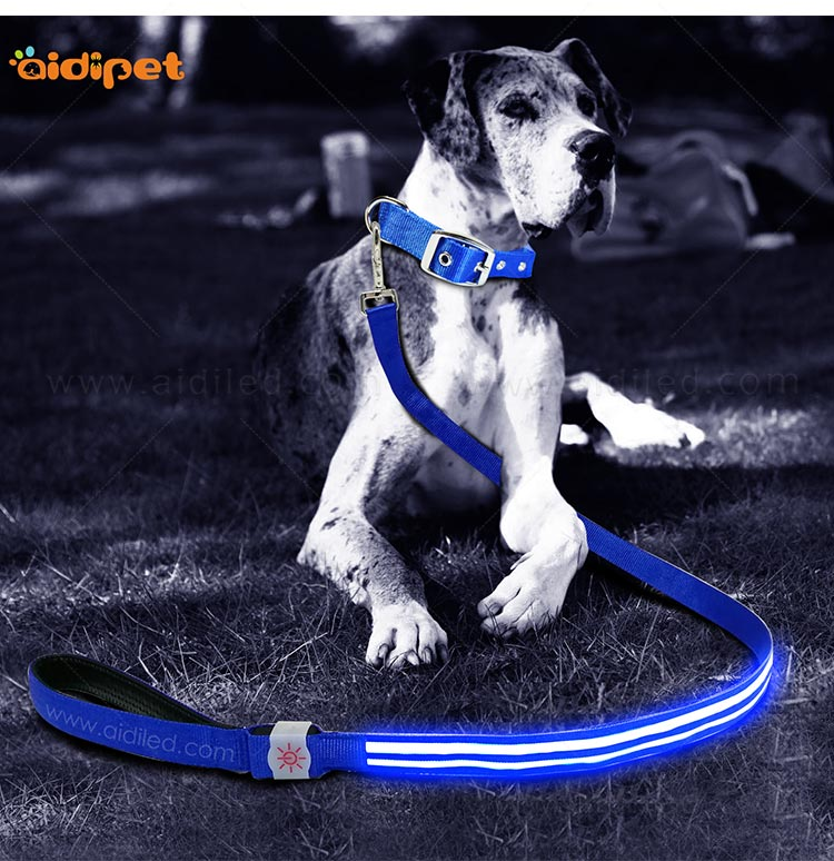rechargeable light up dog leash with good price for pet-9