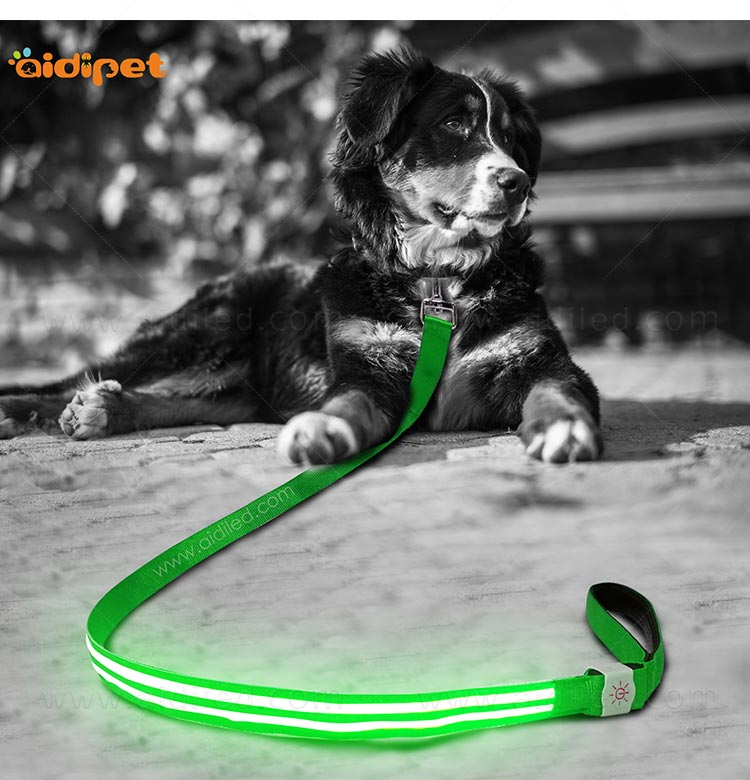 rechargeable light up dog leash with good price for pet-10