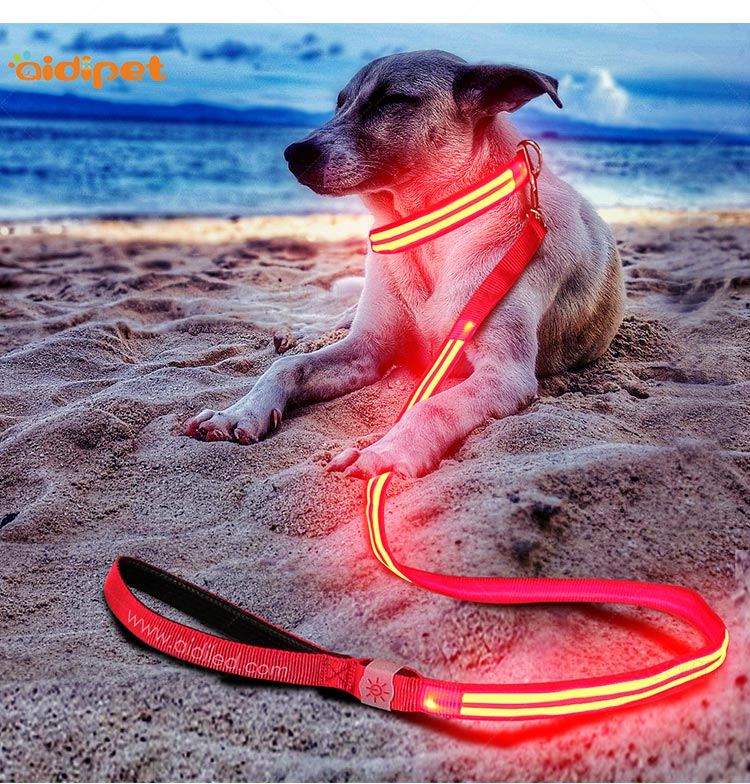 rechargeable light up dog leash with good price for pet-11