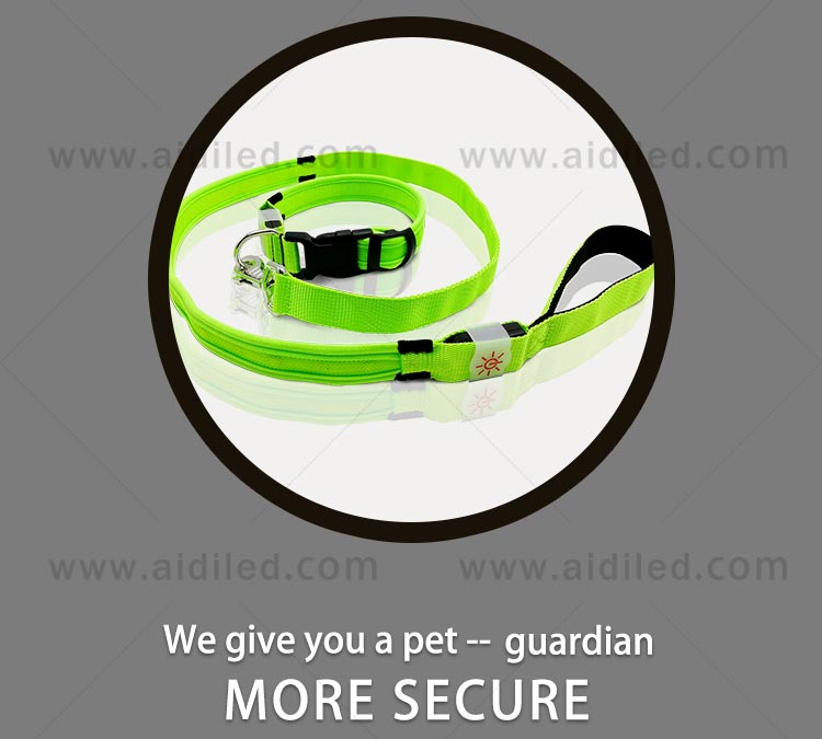 light up dog leash factory for pet-5