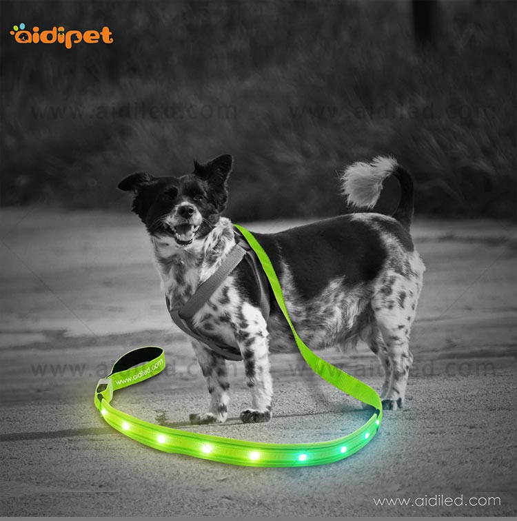 light up dog leash factory for pet-10