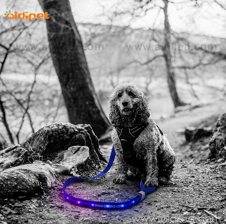 light up dog leash factory for pet-11