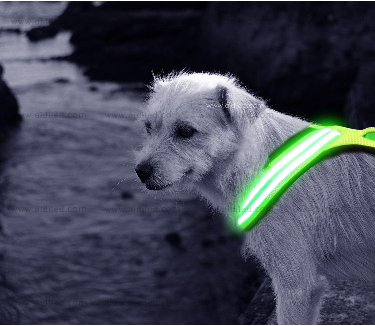 AIDI light up dog harness manufacturer for outdoors-7