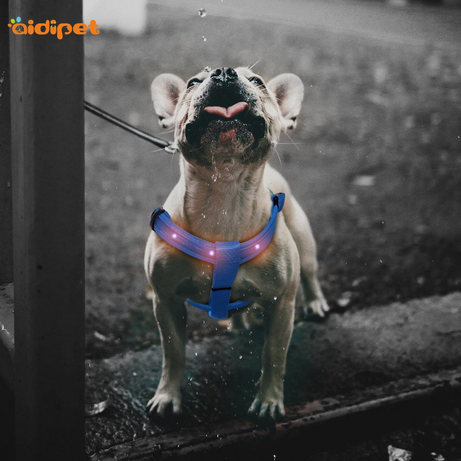 AIDI flashing led harness for small dogs for street