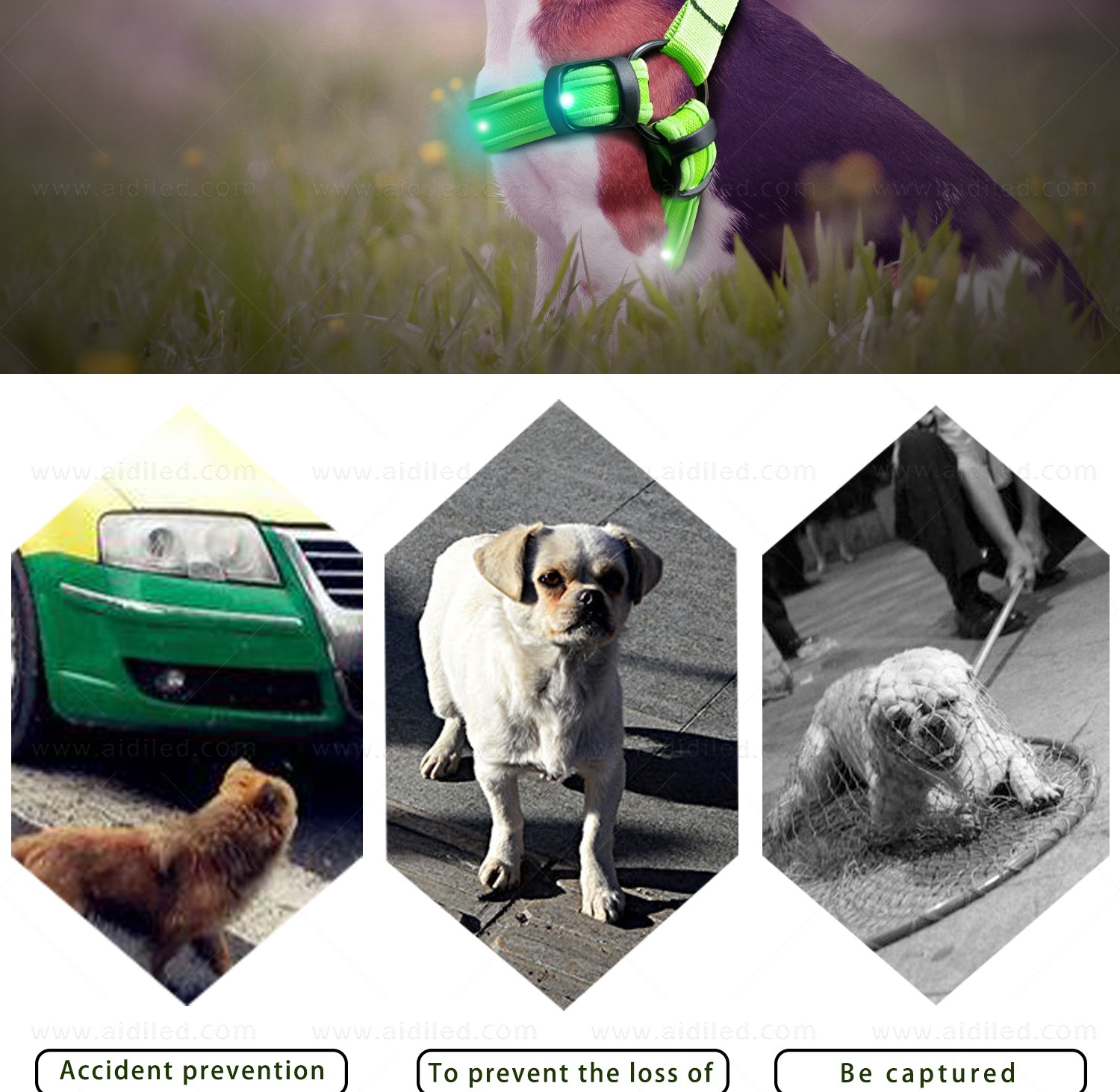AIDI flashing led harness for small dogs for street-14