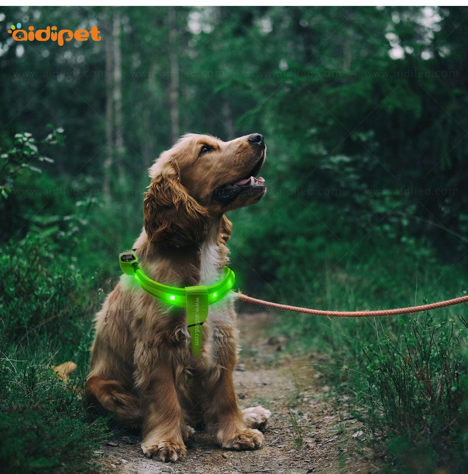 AIDI flashing led harness for small dogs for street-16