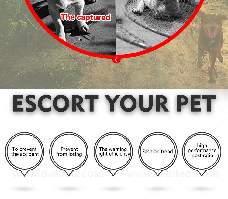 AIDI-Led Dog Harness, Reflective Rechargeable Flashing Led Dog Harness-4