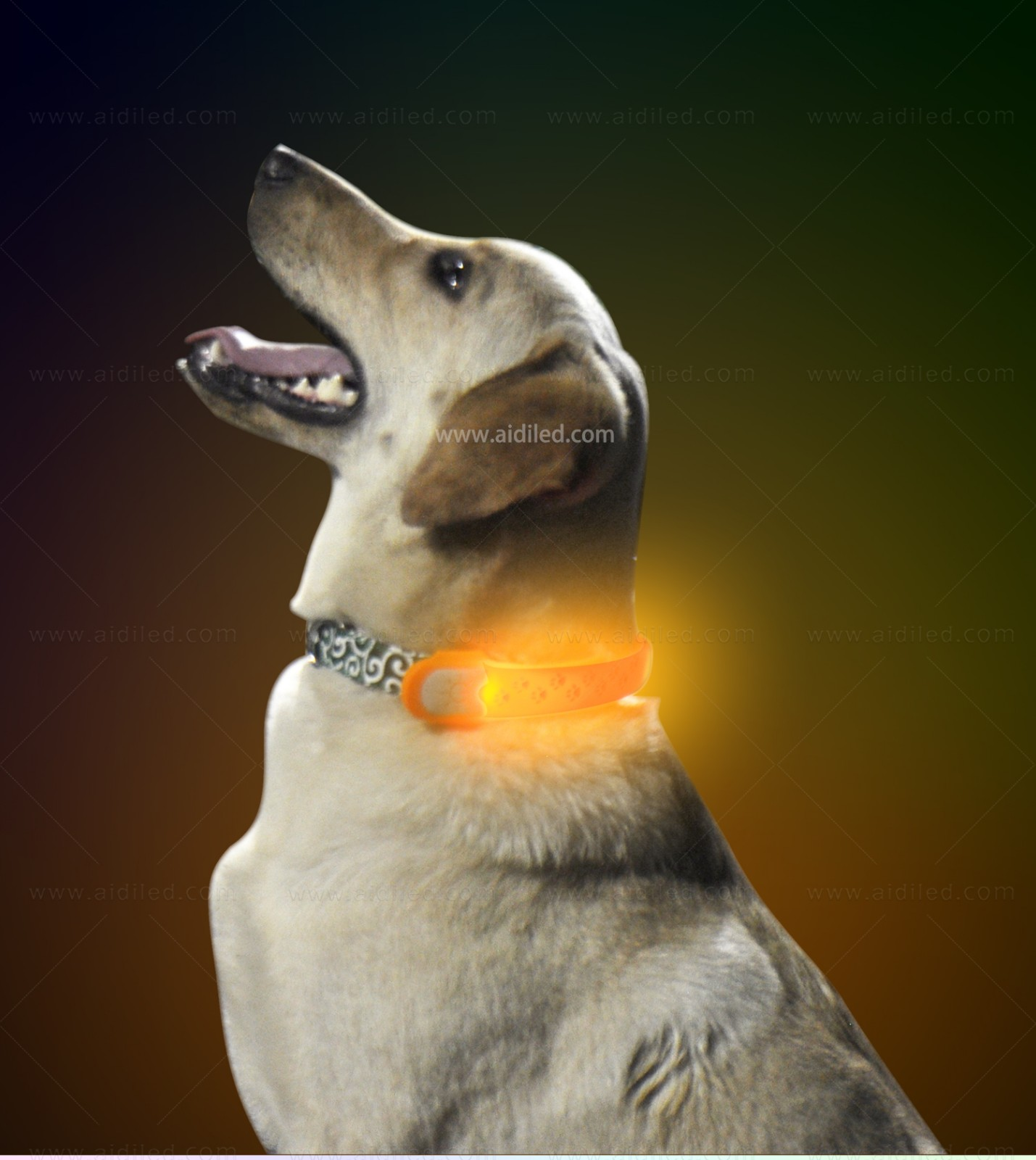dog collar safety light for park AIDI-7