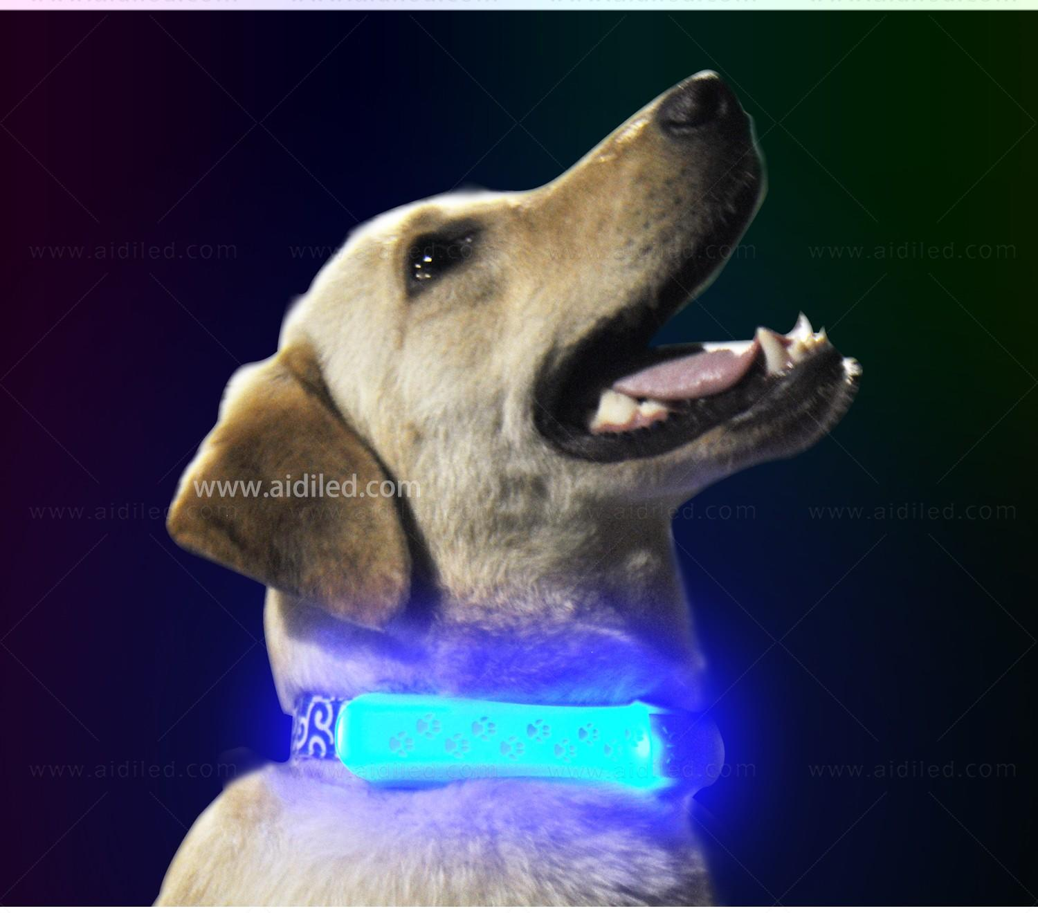 dog collar safety light for park AIDI