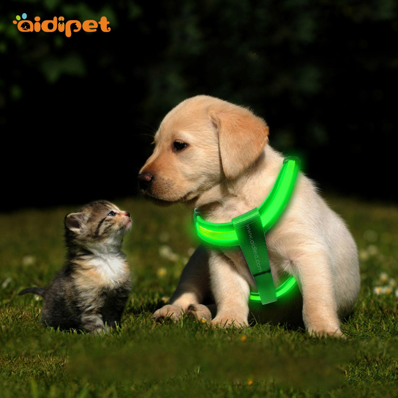 news-AIDI-USB Rechargeable LED Flashlight Dog Harness-img
