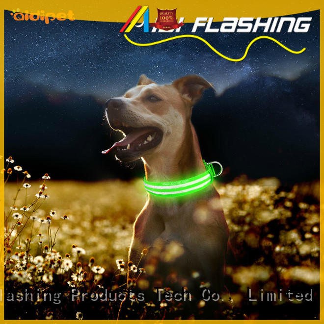 AIDI remote waterproof lighted dog collars design for park