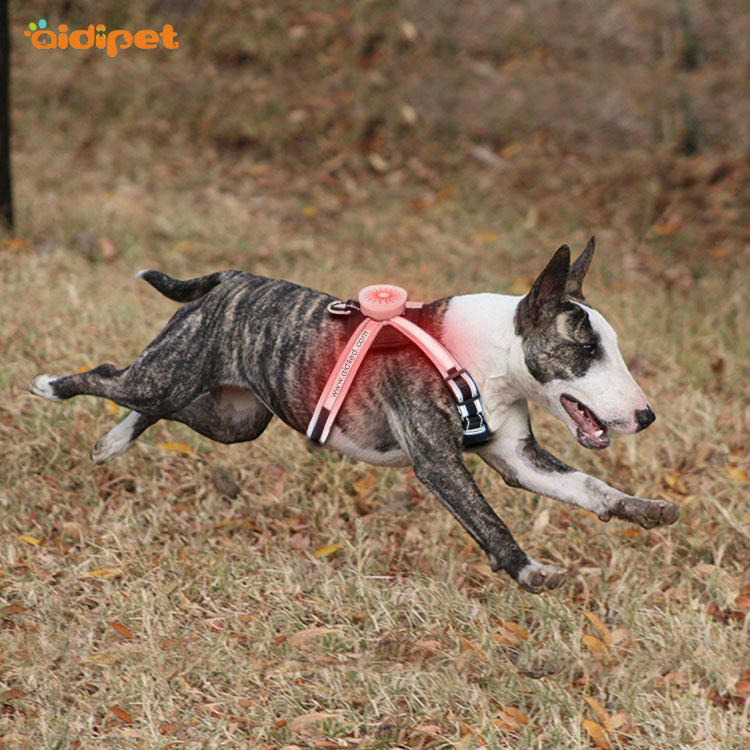 AIDI flashing reflective dog harness manufacturer for outdoors-2