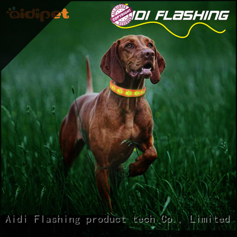 durable illuminated dog collar with good price for pet