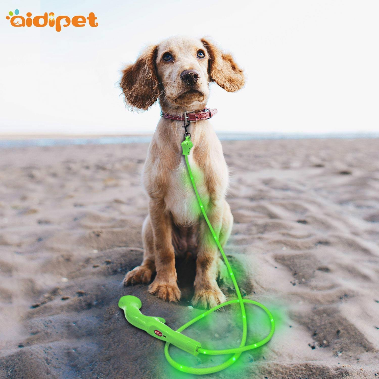 flat light up dog leash with good price for outdoors-2